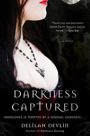 Darkness Captured book image