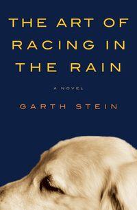 the-art-of-racing-in-the-rain