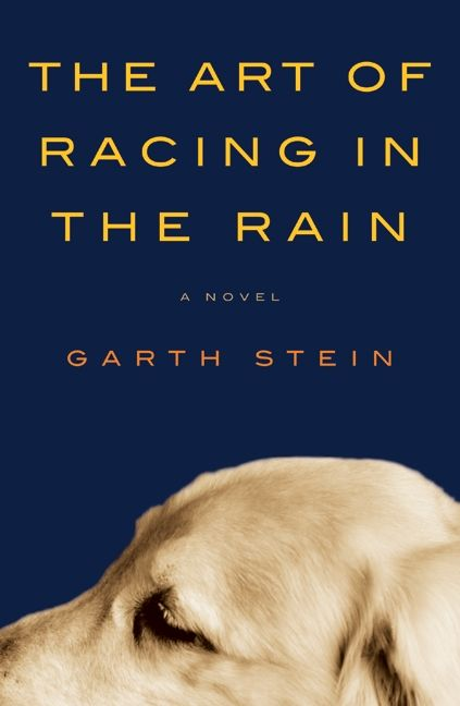 Image result for the art of racing in the rain book cover