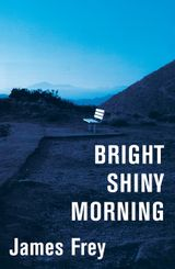 Bright Shiny Morning