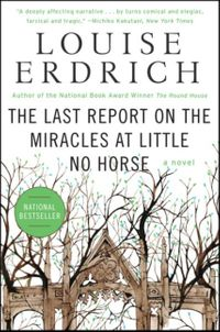 the-last-report-on-the-miracles-at-little-no-horse