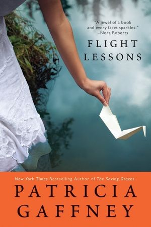 Flight Lessons book image