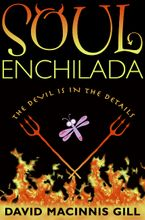 Soul Enchilada Hardcover  by David Macinnis Gill
