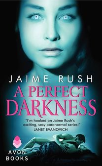 A Perfect Darkness