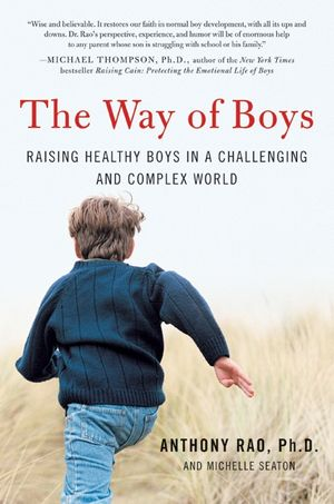 The Way of Boys book image