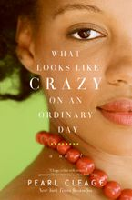 What Looks LIke Crazy On an Ordinary Day Paperback  by Pearl Cleage