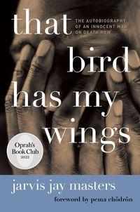 that-bird-has-my-wings