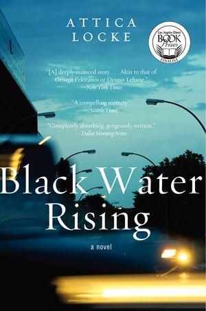 Black Water Rising book image