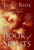 the-book-of-spirits