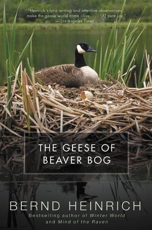 The Geese of Beaver Bog book image