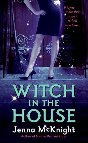 Witch in the House book image