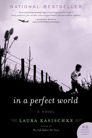 In a Perfect World book image