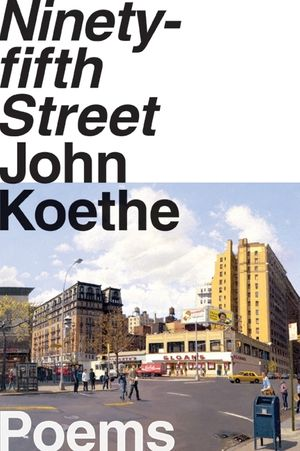 Ninety-fifth Street book image