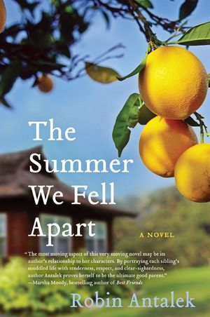 The Summer We Fell Apart book image