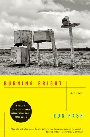 Burning Bright book image