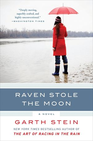 Raven Stole the Moon book image