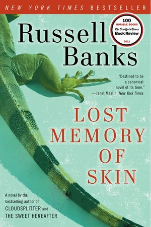 Lost Memory of Skin book image