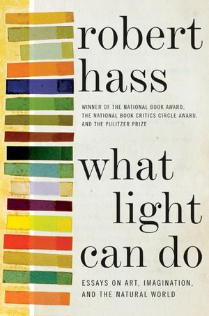 What Light Can Do book image
