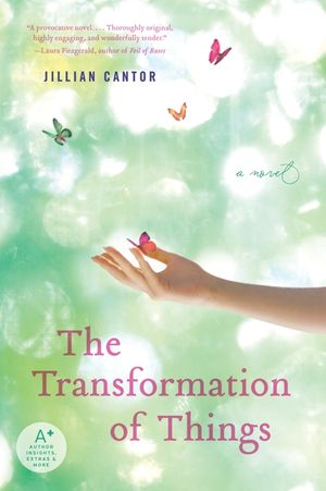 The Transformation of Things book image
