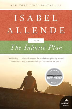 The Infinite Plan book image