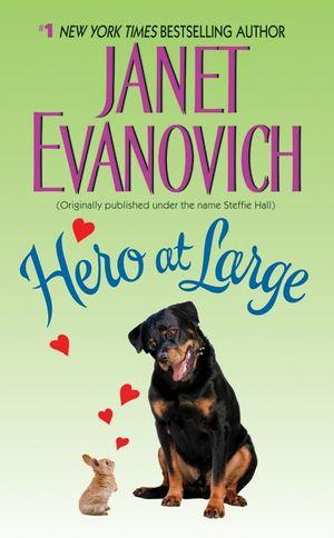 Hero at Large book image
