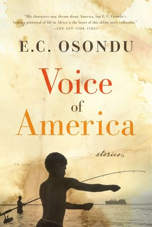 Voice of America book image