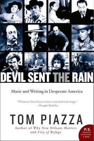 Devil Sent the Rain book image