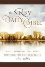 the-nrsv-daily-bible-brown-imitation-leather