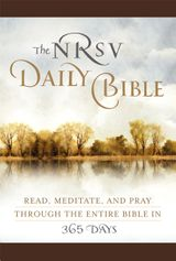 The NRSV Daily Bible  (Brown Imitation Leather)