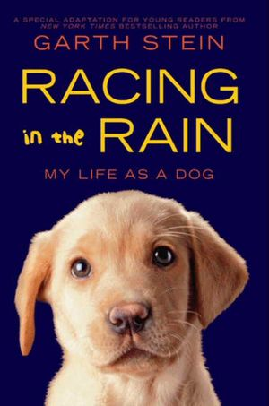 Racing in the Rain book image