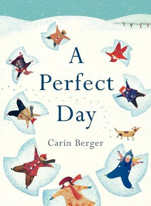 A Perfect Day book image