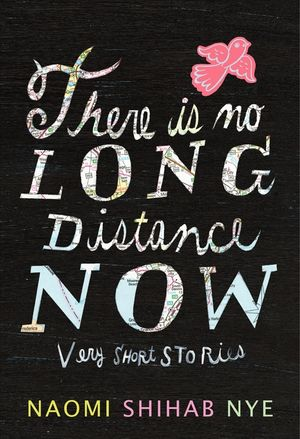 There Is No Long Distance Now book image