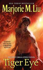 Tiger Eye Paperback  by Marjorie Liu
