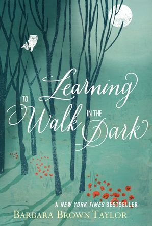 Learning to Walk in the Dark Hardcover  by
