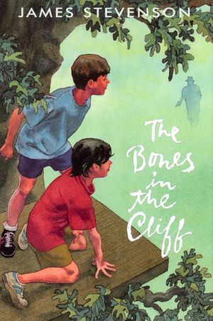 The Bones in the Cliff book image