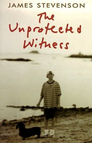 The Unprotected Witness book image