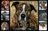 My Lucky Dog