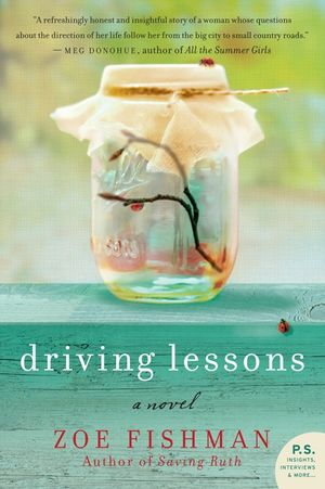 Driving Lessons book image