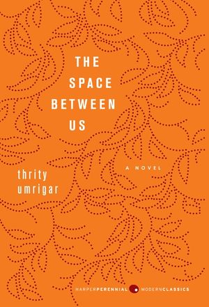 The Space Between Us book image