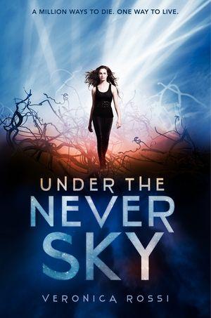 Under the Never Sky book image