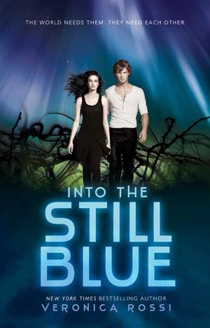 Into the Still Blue book image