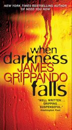 When Darkness Falls Paperback  by James Grippando