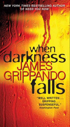 When Darkness Falls book image