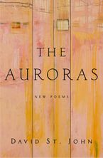 the-auroras