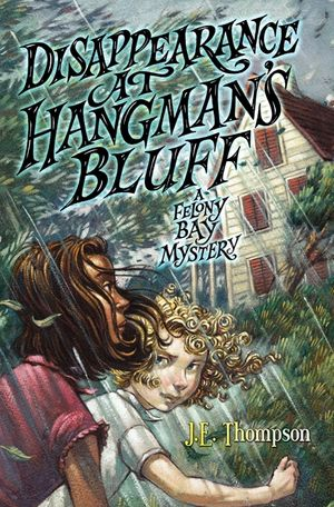 Disappearance at Hangman's Bluff book image