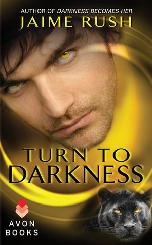 Turn to Darkness book image