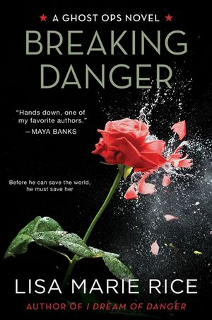 Breaking Danger book image