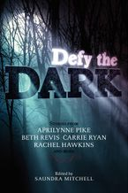 Defy the Dark Hardcover  by Saundra Mitchell