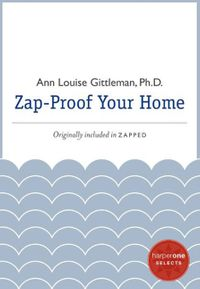 zap-proof-your-home