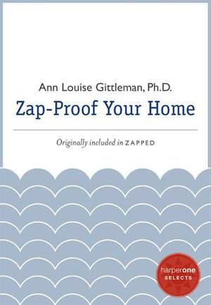 Zap Proof Your Home book image